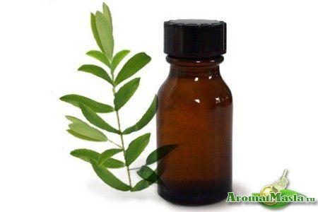 Альтернатива лікарських препаратів: масло чайного дерева для догляду за волоссям
