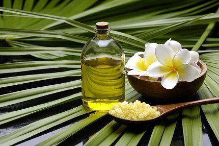 Цілющі властивості олії чайного дерева