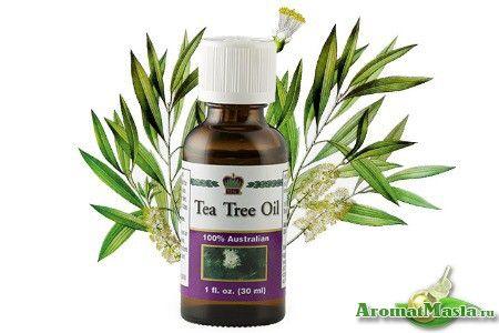 Лікування маслом чайного дерева при нежиті та застуді
