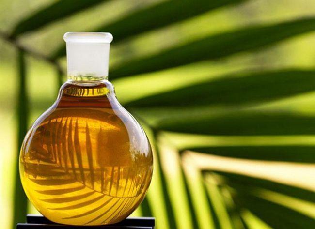 Особливості пальмового масла