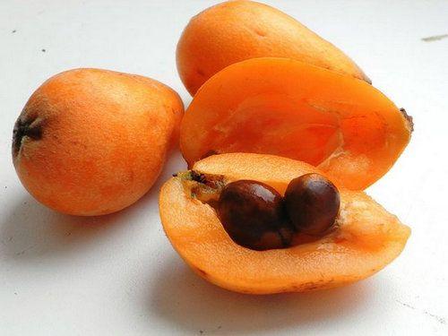 Корисні властивості фрукта мушмули