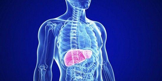 Препарати для чищення печінки від токсинів: список засобів, їх характеристика і ціни
