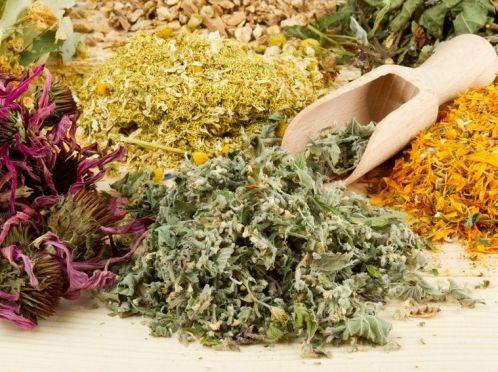 Трав`яні рецепти для ваших вій