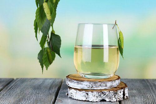 Сік березовий пити - здоровим бути! Корисні властивості, особливості заготівлі, зберігання