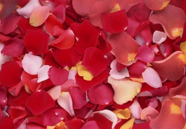 Унікальне рожеве масло: властивості і застосування