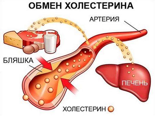 holesterinovaya_dieta_menyu_na_nedelyu-2
